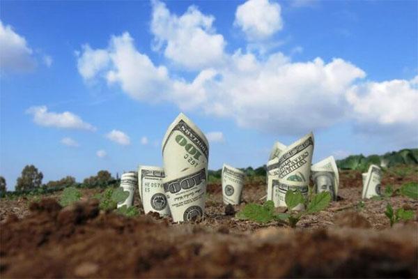 Cách tính tiền thuê đất đối với thuê đất trả tiền thuê đất hàng năm