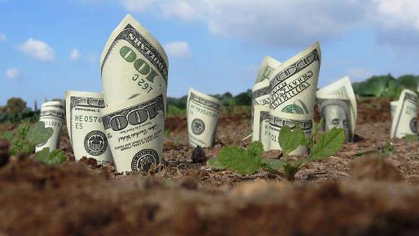 Các vấn đề tài chính liên quan đến việc chuyển đổi đất nông nghiệp sang thổ cư