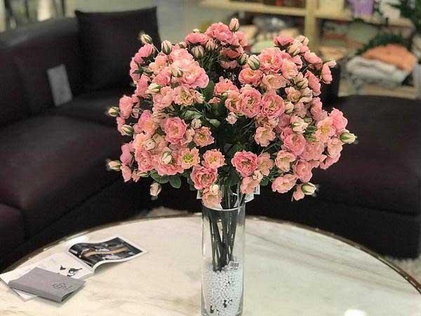 Thay nước cho hoa thường xuyên