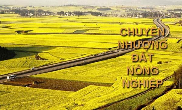 Vậy điều kiện để mua bán đất nông nghiệp là gì?