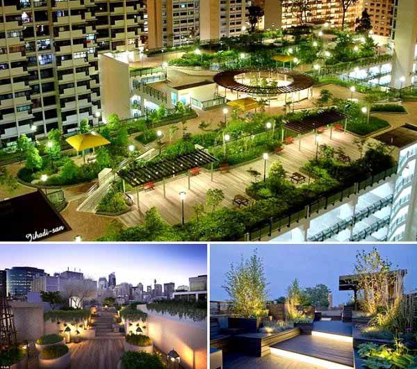 Thiết kế vườn sân thượng với nhiều cây xanh
