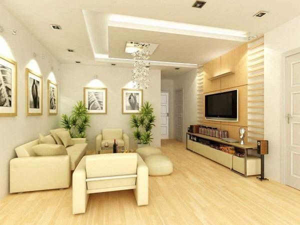 Thiết kế chậu cây xanh trong phòngkhách