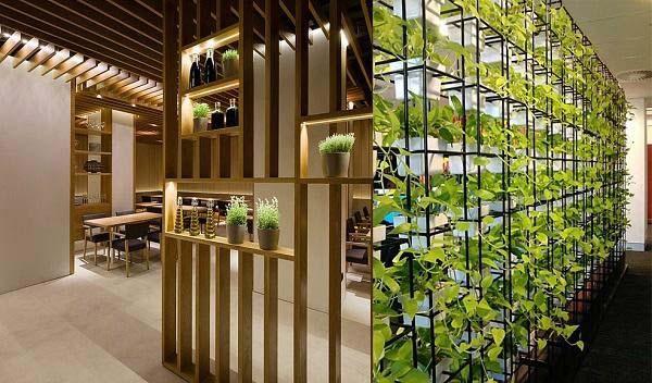 Vách ngăn phòng khách và bếp bằng cây xanh