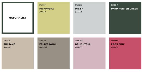 Màu sơn dành cho những ai thích màu trung tính, sở thích tìm tòi, khám phá